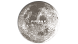 Logo Boutique Prune
